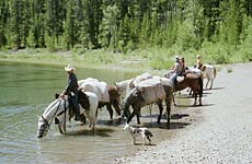 Wyoming Pack Trips at Beard Mountain Ranch