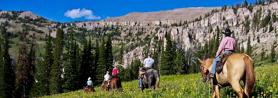 Wyoming Horseback Trail Ride with Beard Mountain Ranch